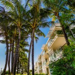 Resort Front/Coconut Palms