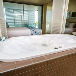 Master Bathroom/Bedroom