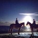 Ride along our pristine shores with Rainbow Beach Horse Riding